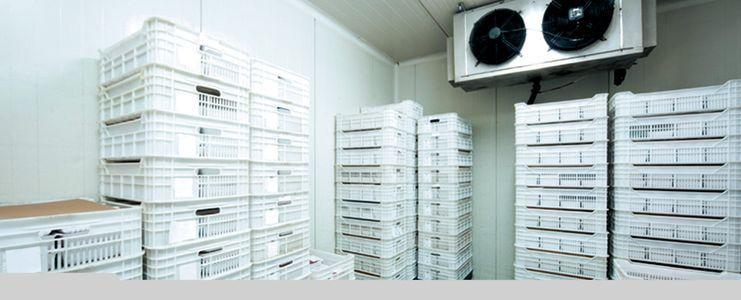 managing refrigerant
